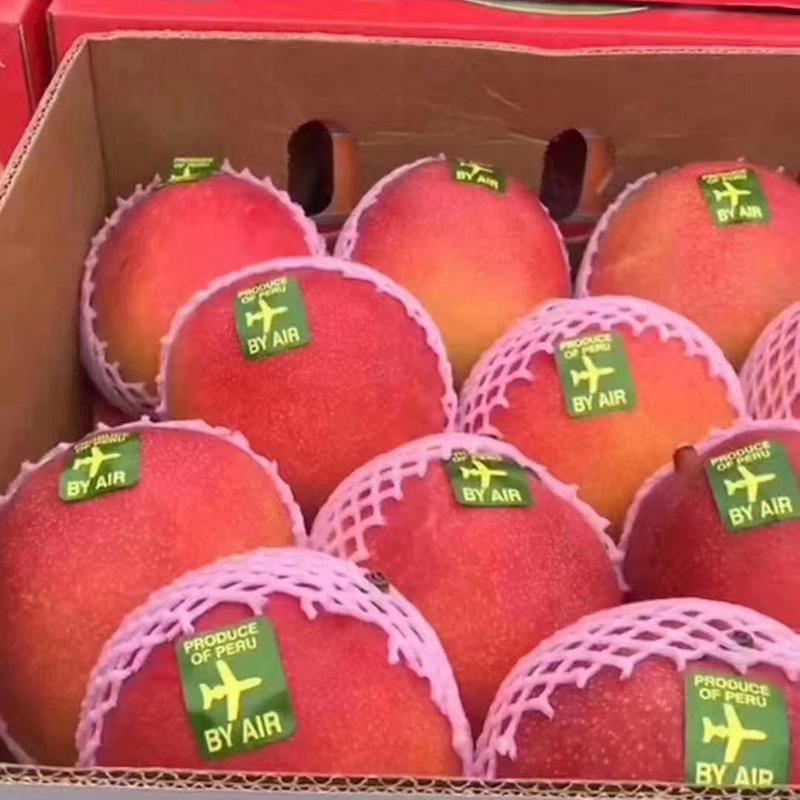 澳芒大芒果进口特大 整箱10斤一箱应季海南三亚 热带水果新鲜当季