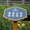 小区草地绿化标识牌爱护花草树木草坪请勿戏水提示警示小草关怀牌