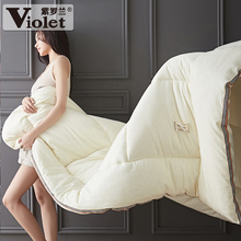 Violet quilt thickened warm spring and autumn winter quilt core winter air conditioning quilt quilt quilt single double space quilt
