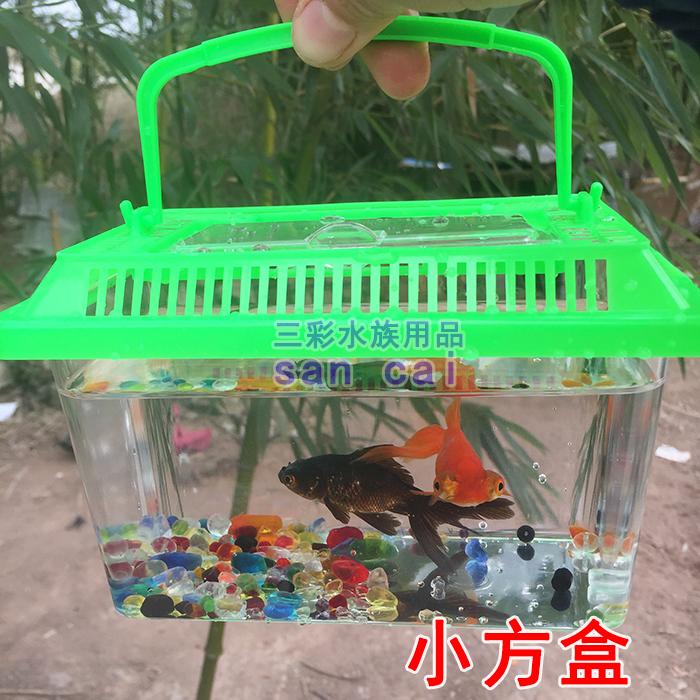 手提宠物饲养盒运输盒鱼缸塑料迷你qq鱼瓶qq龟瓶塑料乌龟缸金鱼缸