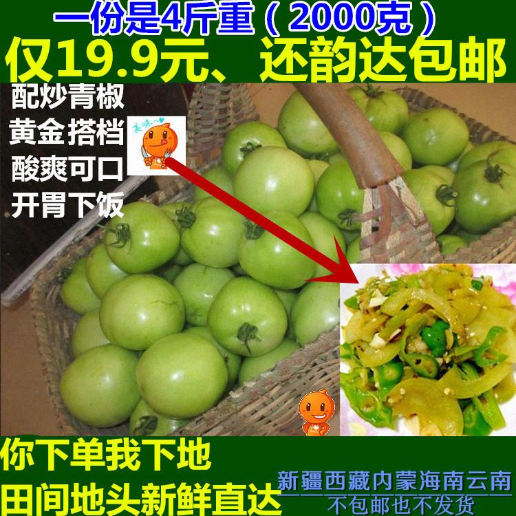 新鲜采摘青西红柿 农家肥无农药残留绿色蔬菜番茄 韵达包邮