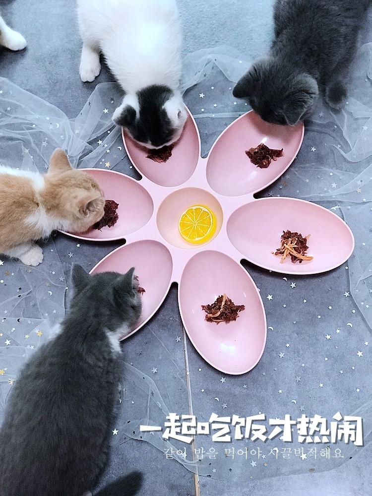 ペットの食事碗の花弁型六辺のペットの会食器多猫家庭の猫の碗の英の短い流浪猫の碗