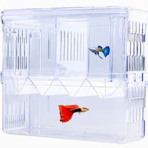 Acrylic Fish tank isolation box oversized pneumatic spawning incubation box peacock fish breeding box delivery room small Fry