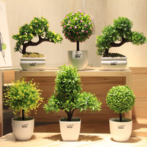 wo+ Home decoration small tree rich tree grass ball simulation flower Set floral decorative flower flower potted Bonsai