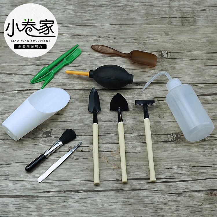 小卷多肉 专用种植工具 园艺用品 喷壶 刷子 镊子 游标卡尺 黑方