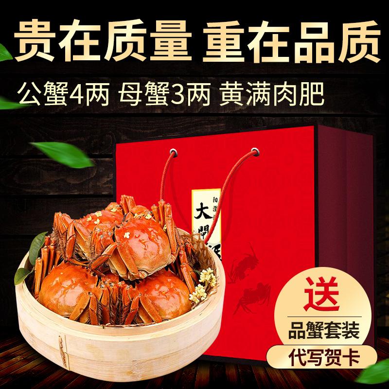 现货送4只阳澄湖大闸蟹母螃蟹3两共发10只 可换公4两礼盒装鲜活
