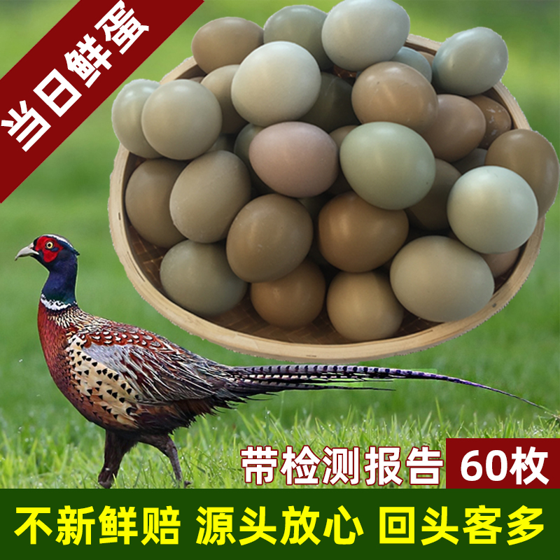 山鸡蛋60枚 七彩山鸡蛋新鲜 野金鸡蛋 绿壳乌鸡蛋 农家土鸡蛋
