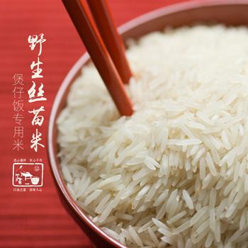 广东特产野生丝苗米2斤装颗粒分明长粒细身丝苗大米粘米煲仔饭米