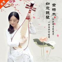华乐琴韵大人琵琶初学者入门练习级琵琶乐器大学生杨木琵琶送指甲