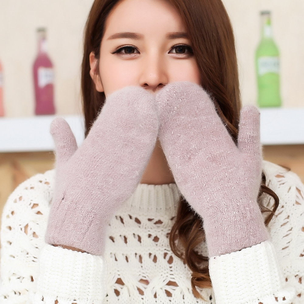 2017 new package finger gloves womens winter thickened double layer Plush wool warm student simple full finger gloves
