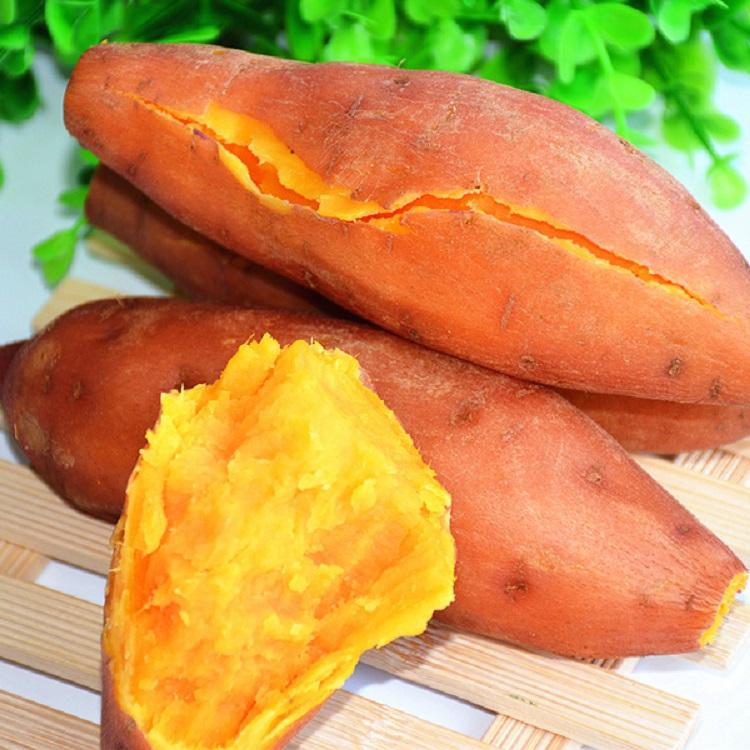 【5斤装】水果红薯 甜番薯高山富硒黄心地瓜南瓜苕新鲜菜爆款清单