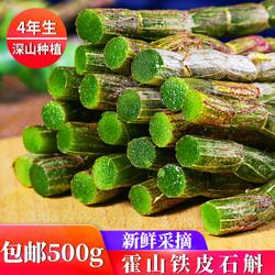 新鲜霍山铁皮石斛500g石斛鲜条深山种植特级枫斗花茶苗干粉中药材