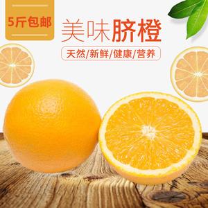 南非橙子新鲜手剥甜橙皮薄汁多榨汁现摘现发不催熟不打蜡5斤橙