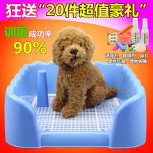 Средства для ухода за собаками и кошками > Лотки для туалета.
