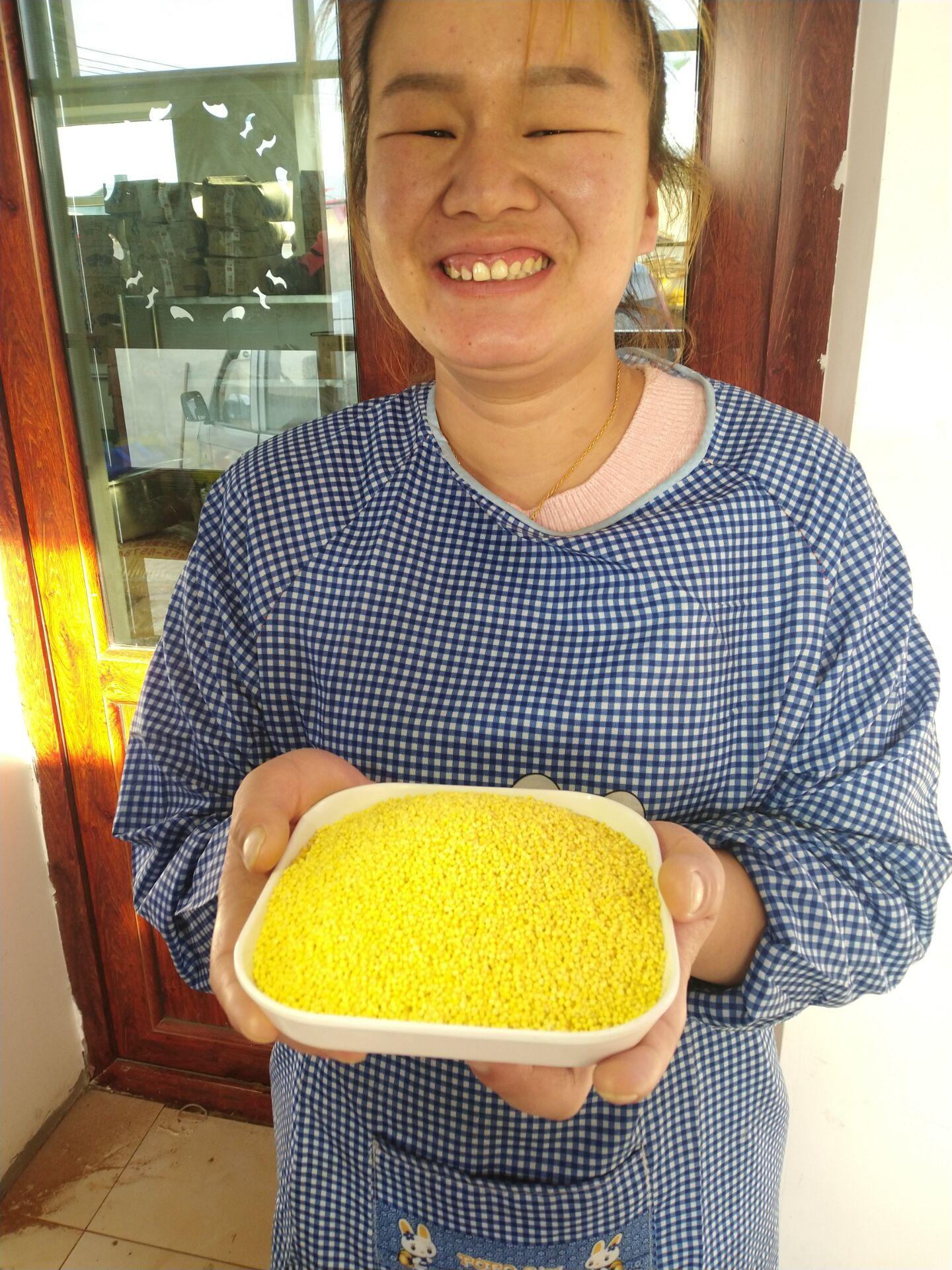 2019新东北大黄米糯小米粘糯小米一份5斤新米熬粥粘豆包粽子