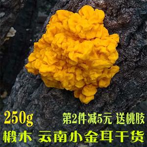 领1元券购买云南野生金耳菌250g特产干货黄木耳