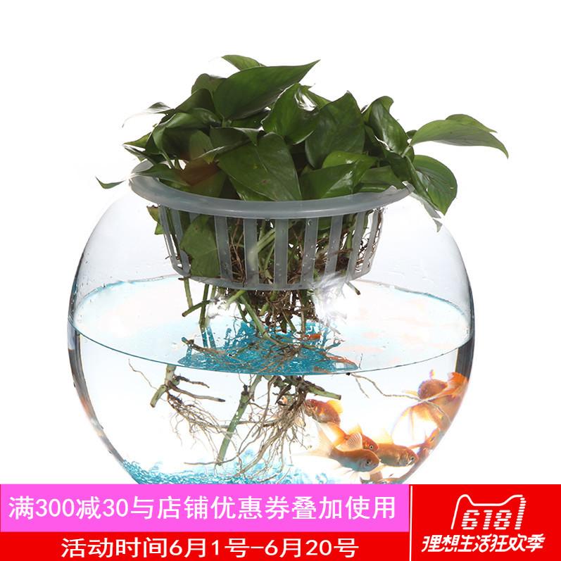 Bing Yi 水族箱怎么样,好不好