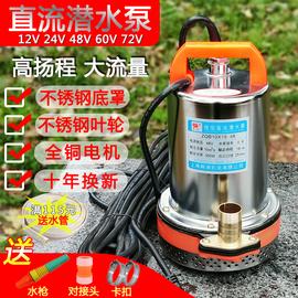 直流潜水泵电动车12V24V48V60V伏一寸高扬程抽水机电瓶浇菜水井泵