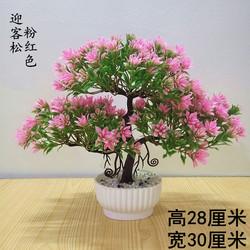 假花仿真花植物盆栽桌面小盆景摆设品客厅卧室办公桌茶几桌面摆件