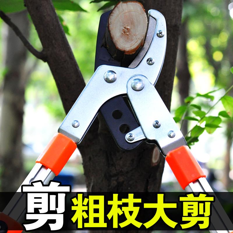进口粗枝剪高枝修枝剪树枝剪果树剪子园艺剪刀伸缩大力剪园林工具