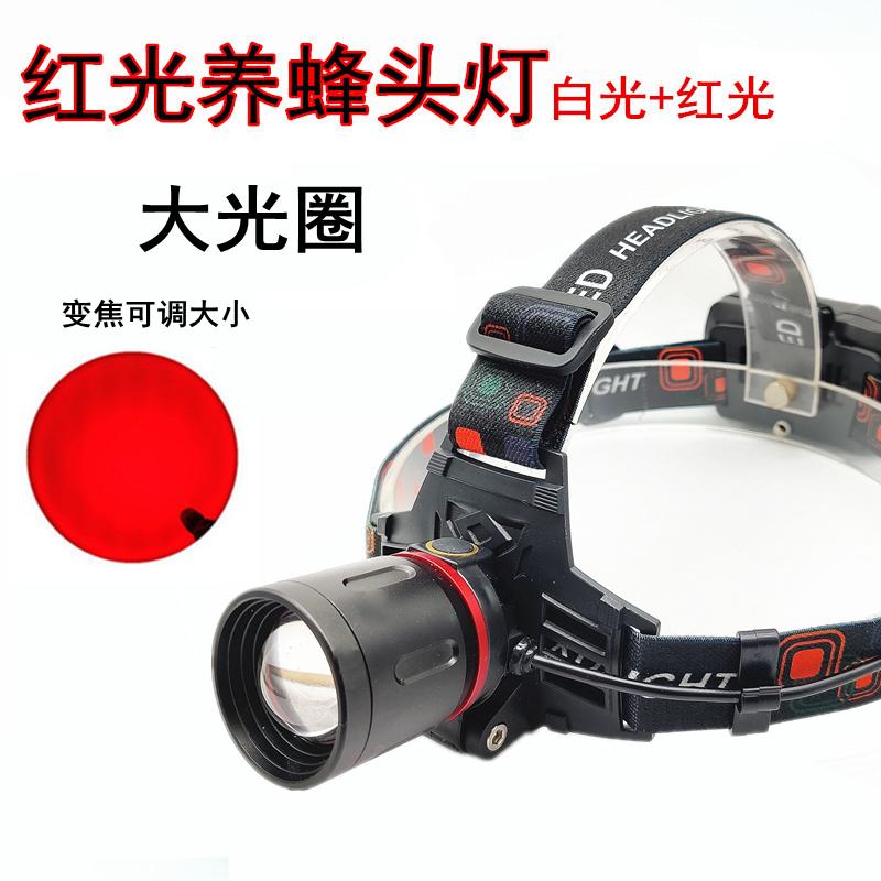 红光头灯专用养蜂查蜂取蜜抓蜂红白双光源头戴式手电筒变焦看鱼灯