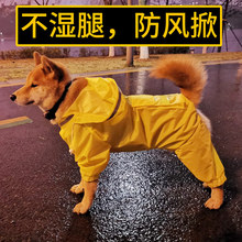 Golden Raincoat, Dog, firewood dog, Samoye Border Shepherd, Medium-sized and Large Dog, Full Pack Pet Waterproof Big Four-legged Dog Clothes