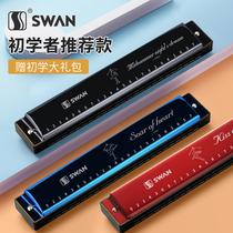 天鹅口琴儿童初学者学生男士24孔C调复音女专业演奏级正品乐器