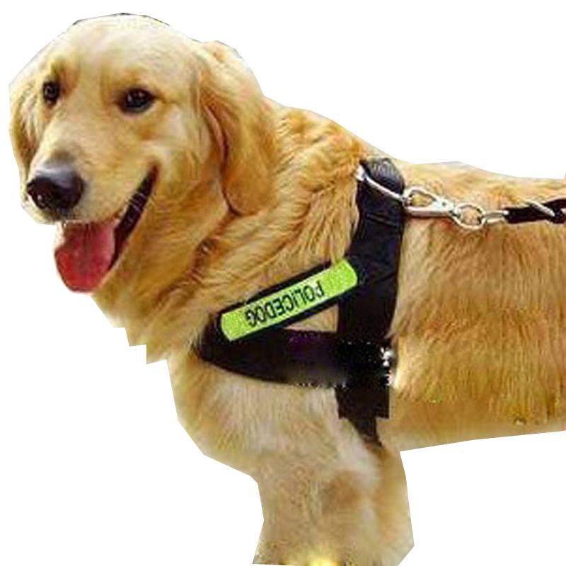 反光寵物牽引繩 大型犬中型犬狗繩子狗鏈子 金毛薩摩胸背帶牽引帶
