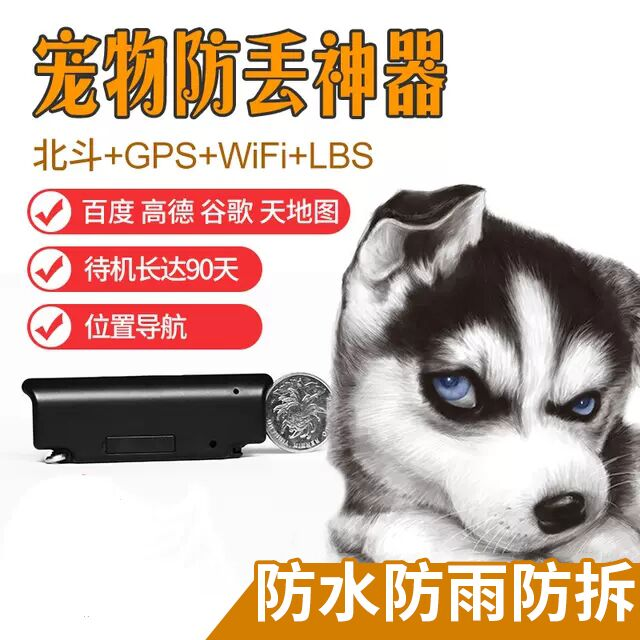 Professional pet dog, hound, hound, animal husbandry, cattle and sheep, animal locator, GPS collar, waterproof