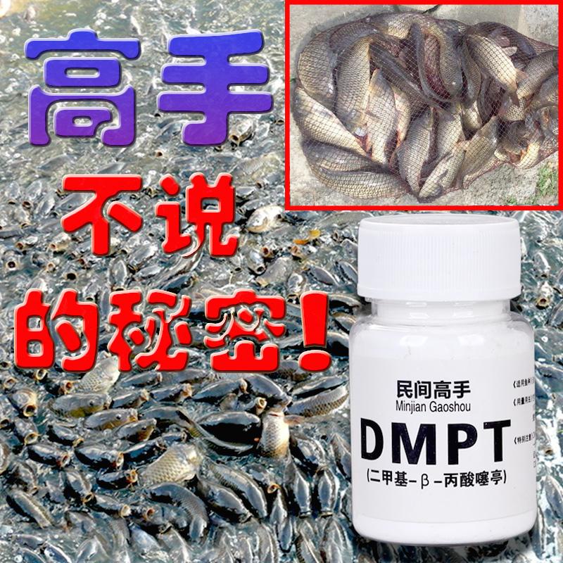 钓鱼小药DMPT小箹约黑坑野钓鲤鱼鲫鱼饵饵料打窝料诱鱼促食添加剂