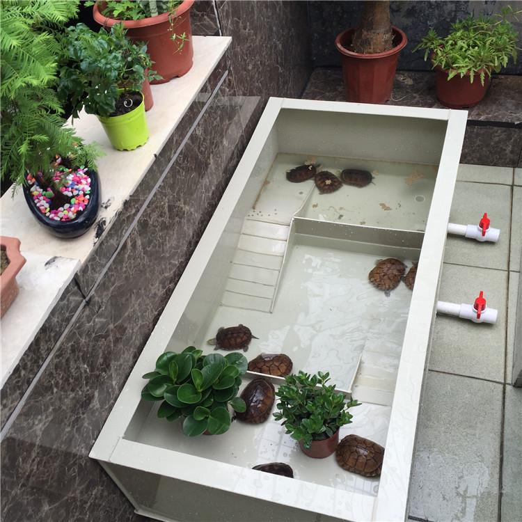 龟池养殖箱家用大型龟苗小龟带晒台喂食区龟池龟箱南石龟草龟巴龟