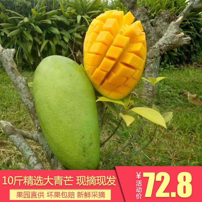 攀枝花芒果大青芒新�r��季水果甜心芒�P特芒果青皮金煌芒包�]10斤