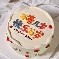 圣诞节网红小清新生日蛋糕送男友女友吉林哈尔滨长春西安沈阳同城