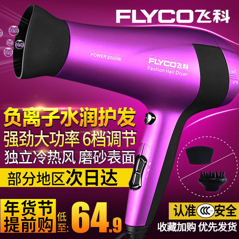 Flying Branch hair dryer home salon barber shop hot and cold wind power anion hair dryer drum mute students