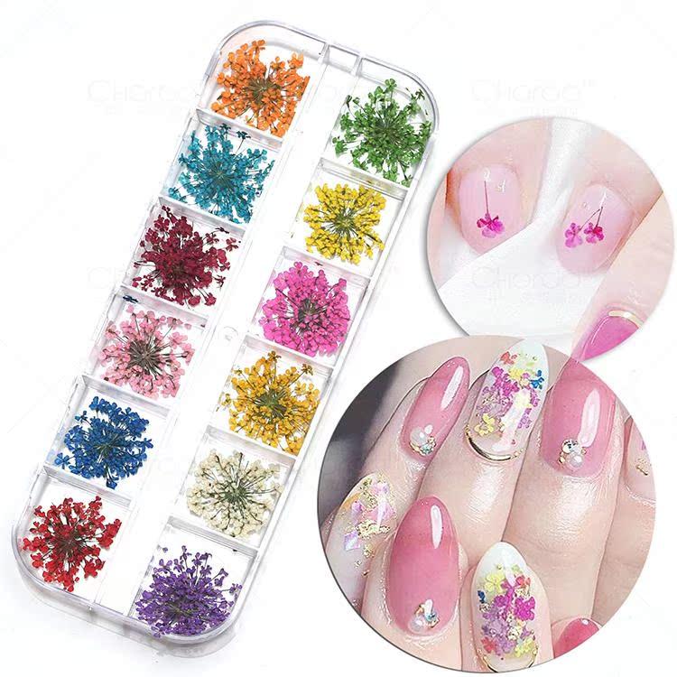 指甲油胶光疗贴花满天星3d色12美甲饰品小干花瓣叶大花朵天然真花