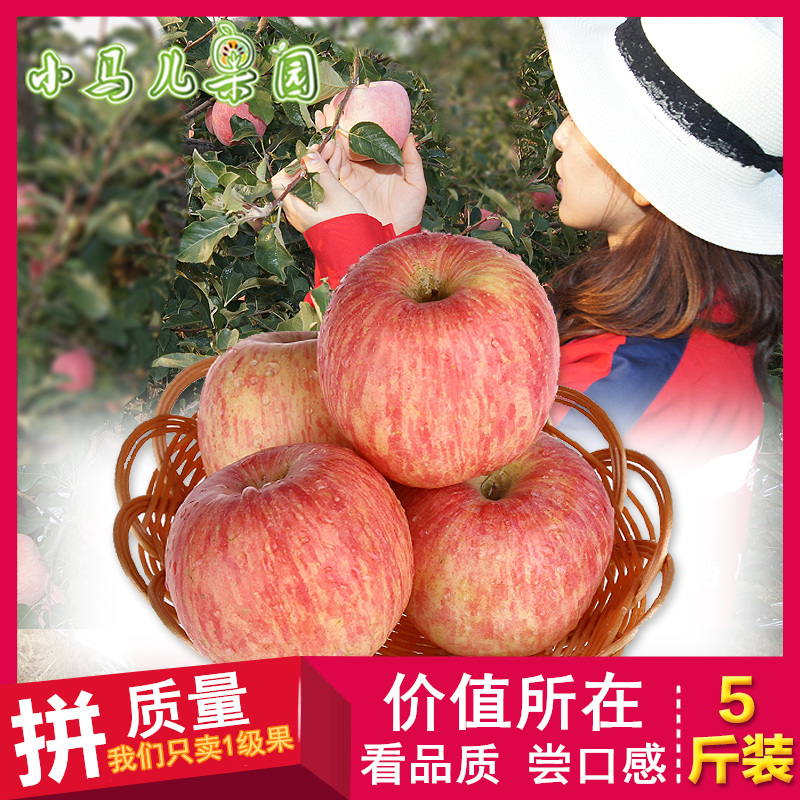 Shandong Yantai apple 80 × 5 jin authentic Qixia Apple Red Fuji Apple stripe crisp sweet fresh fruit package