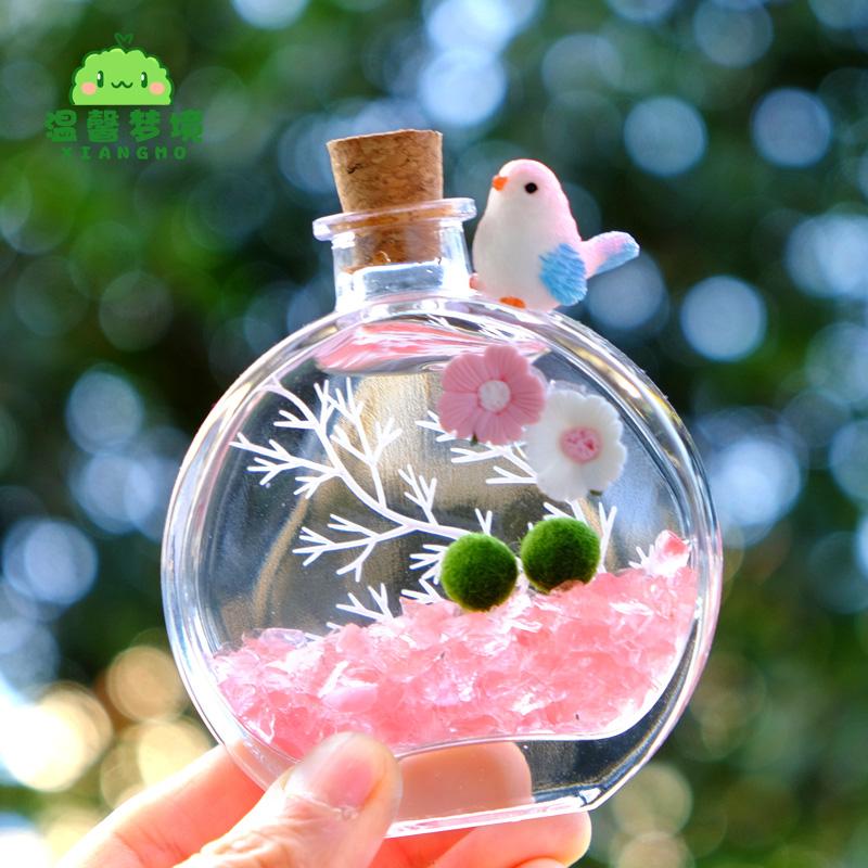 MARIMO玻璃香水瓶海藻球马里莫微景观新奇水培植物室内迷你绿植