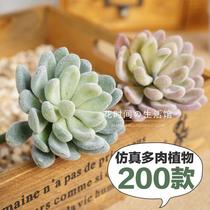 仿真多肉植物假花品种齐全手感好室内家居装饰品摆件组合盆栽套装