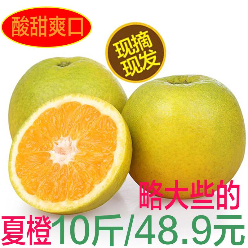 秭归夏橙当季新鲜水果脐橙现摘10斤包邮橙子非伦晚橙赣南冰糖橙子