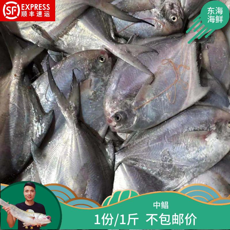 【东海海捕海鲜】中鲳 1份/1斤 不包邮价
