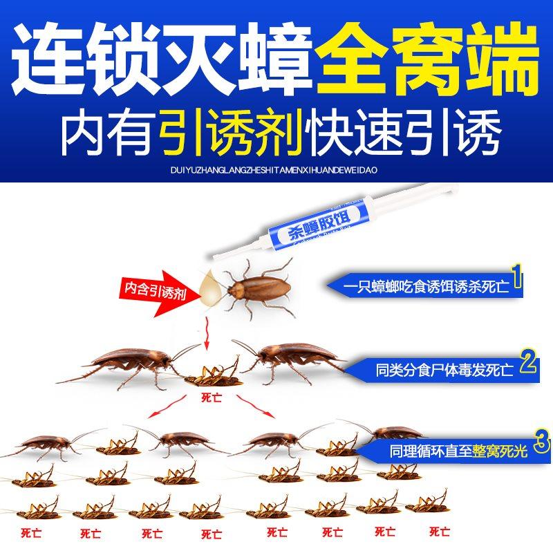 灭蟑螂药家用无毒一窝全窝端杀虫剂厨房杀蟑螂屋强力神器驱虫克星券后23.83元
