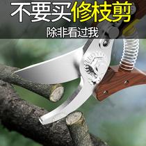 剪枝果樹修枝剪刃瞻藝修剪樹枝園林省力修花枝剪家用強力剪子神器