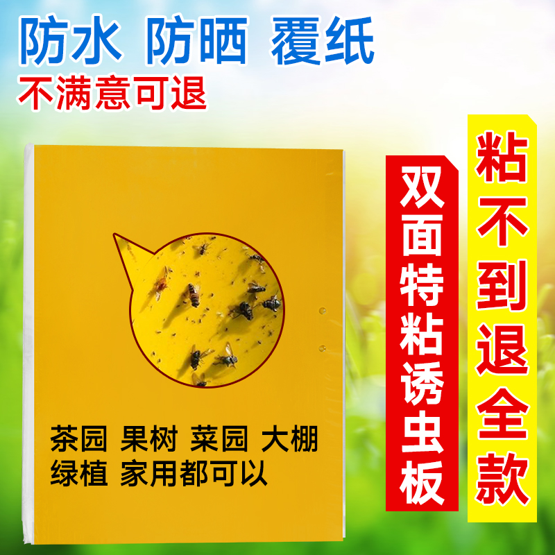 Double sided yellow sticky insect board 10 pieces balcony vegetable orchard fleshy sticky insect board sticky small flying insects horticultural supplies