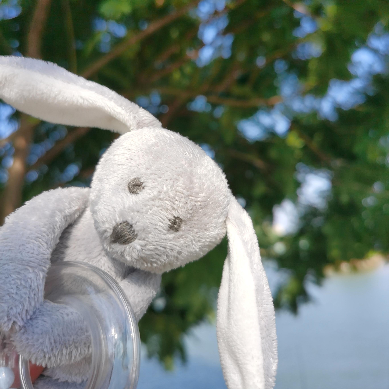 出口法国 JACADI 超柔灰色小兔子珠珠手摇铃玩具 婴幼儿玩具
