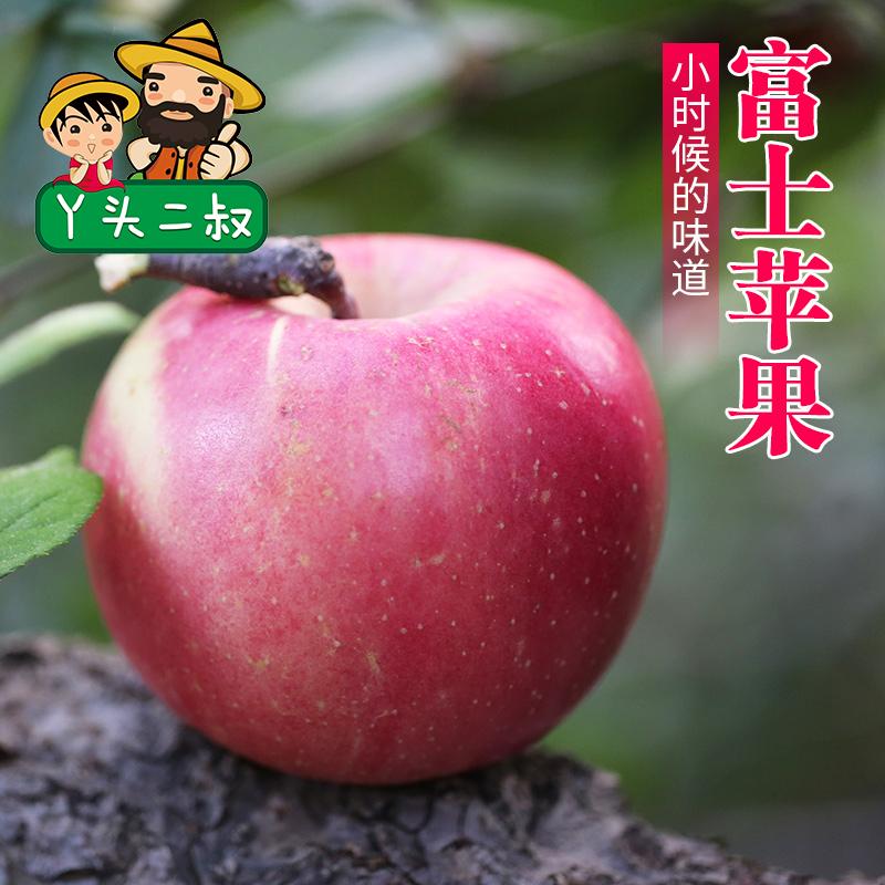 密云新鲜水果苹果富士苹果
