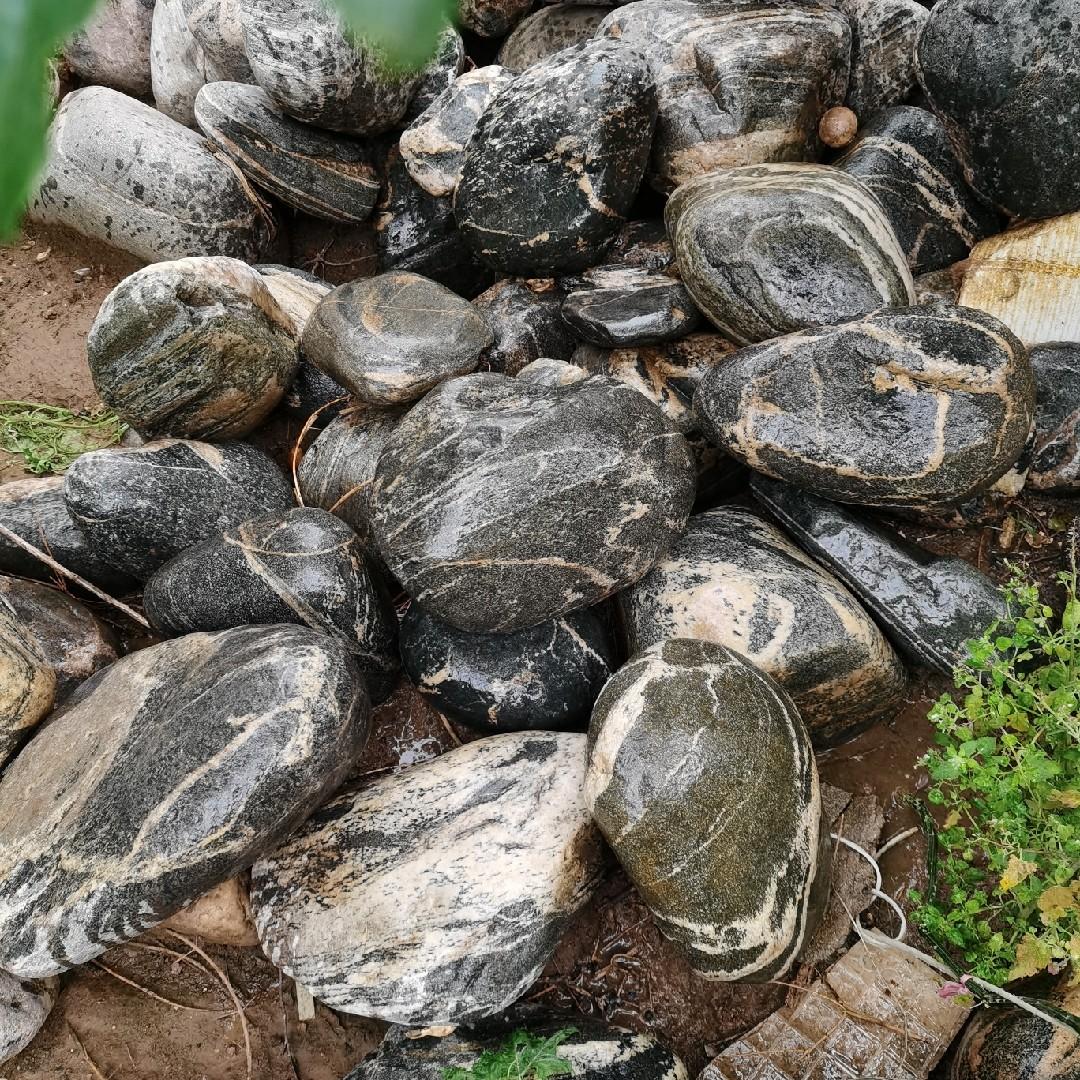 Сувенирные камни Артикул 643206671314
