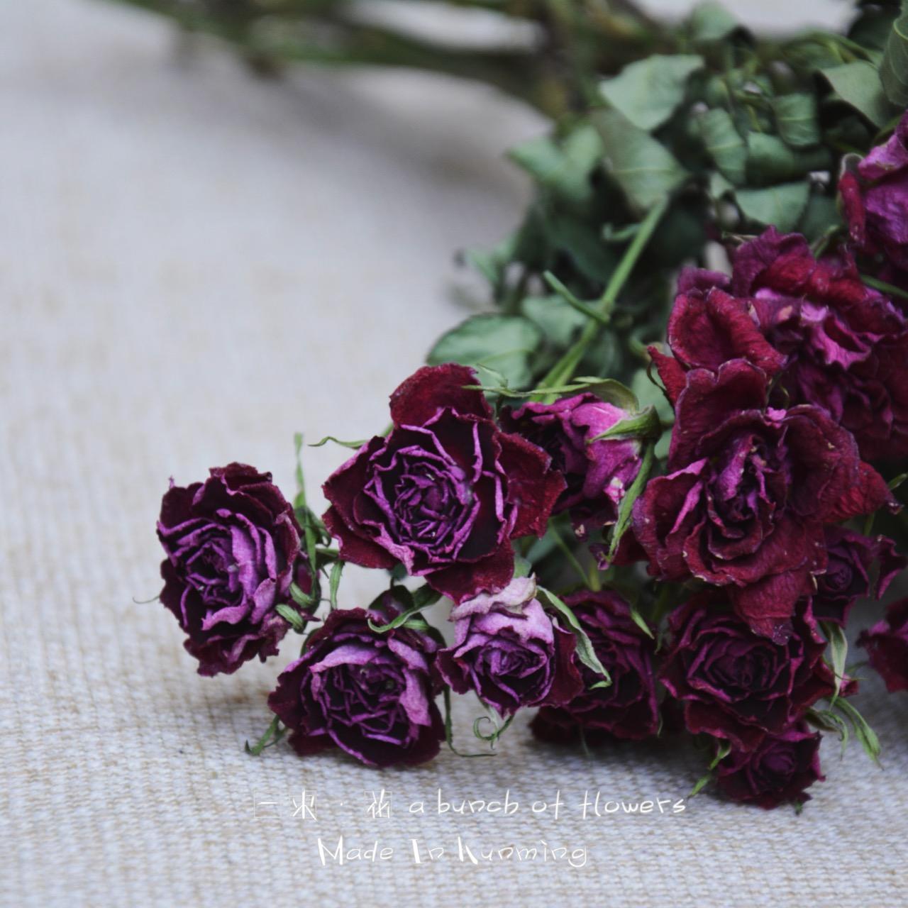 Волна матч нигерия иеорглиф ля женских имён бык красная роза сухие цветы большой палец руки роуз мини сухие цветы серьги ювелирные изделия использование лесоматериалы немного пакет