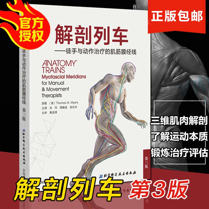 正版包邮 解剖列车 简体中文第三版第3版 解剖学图鉴 徒手与动作的肌筋膜经线 彩色人体解剖学医学图谱北京科学技术社