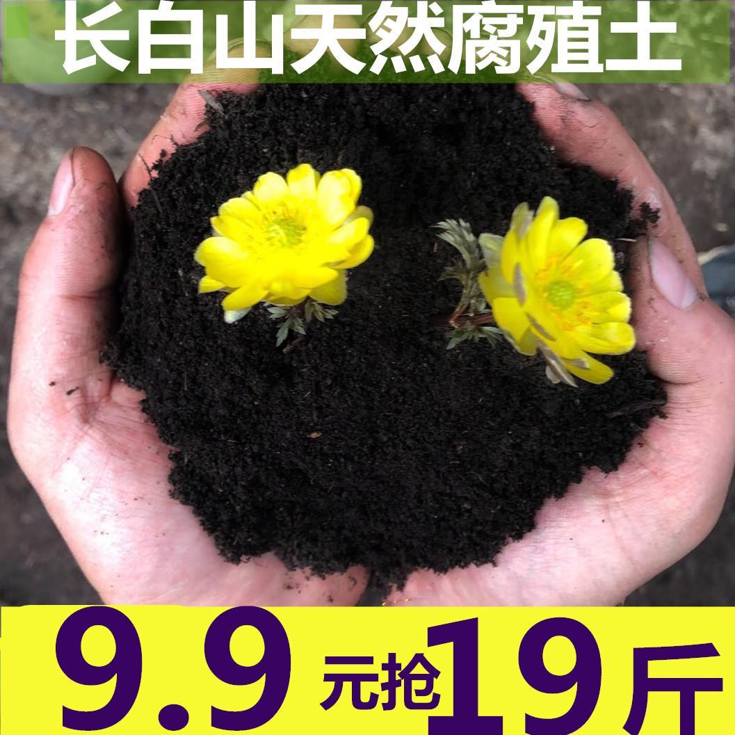 长白山森林黑土腐殖土阳台种植种菜土营养土花土有机肥料大包包邮