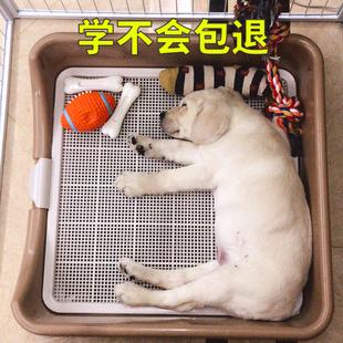 狗狗厕所狗自动便盆尿盆拉屎拉便神器中型大型犬大号冲水宠物用品